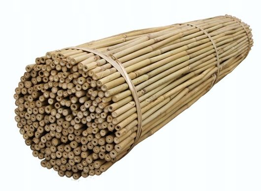 Tyczka bambusowa 295cm 28-30mm 30szt